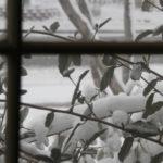 Snow outside window